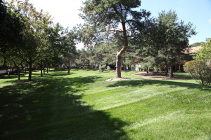 Royal Lawn & Landscape - 694-LAWN