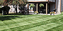 Lawn Maintenance From Royal Lawn & Landscape