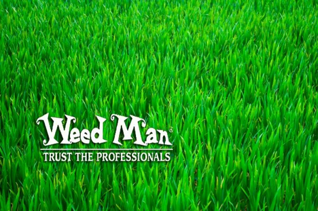 Weed Man From Royal Lawn & Landscape